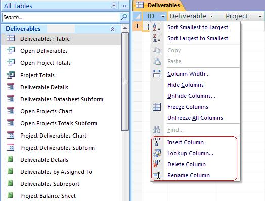 Disable design changes for tables before deploying for Table design ms access